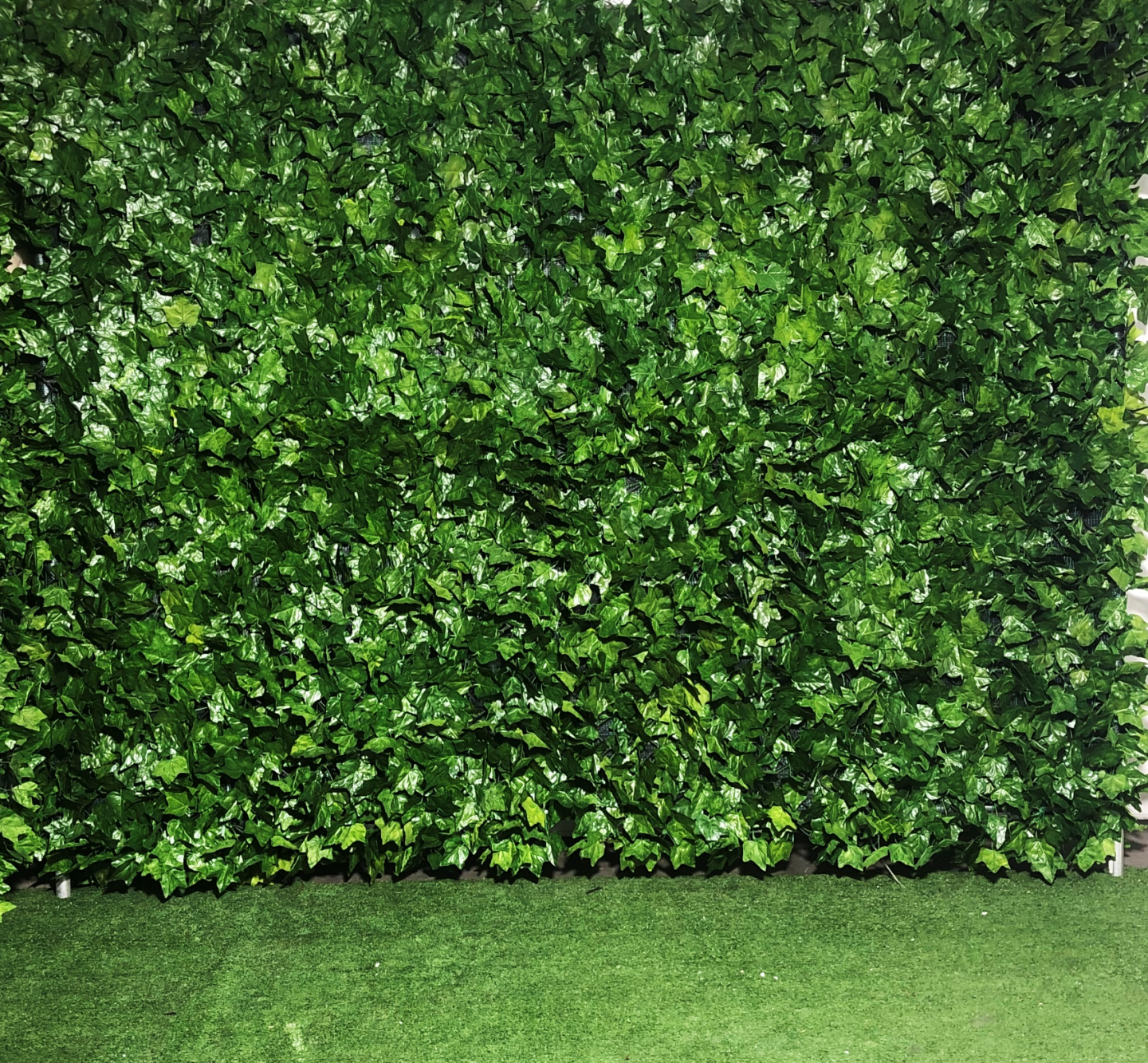 Ivy Wall Atlas Event Party Hire Party Hire Equipment Adelaide Sa