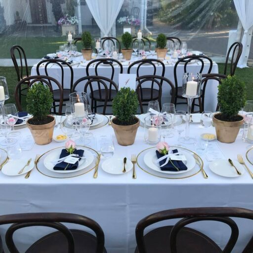 wedding-in-collinswood-with-10m-x-27m-clear-pavilion-with-roof-draping-and-bentwood-chairs
