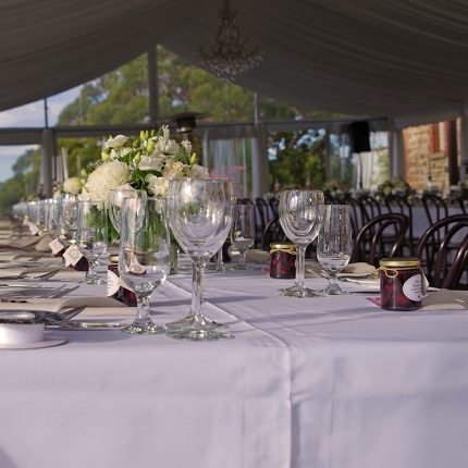Marble Hill-Bentwood chairs & Princessa glassware
