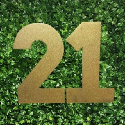 21 sign - close up - large